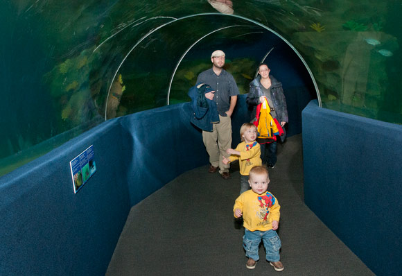 Are we there yet 10 ways to entertain your kids while Cleveland ohio aquarium