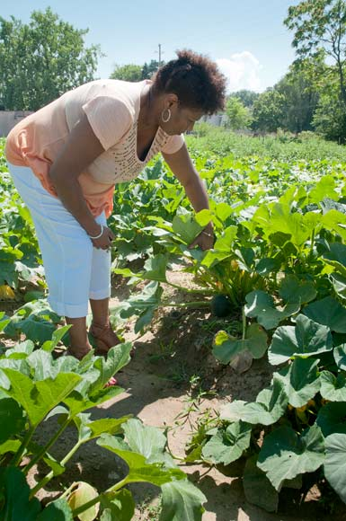Erica Robinson, Project Manager with Famicos at Cleveland Crops