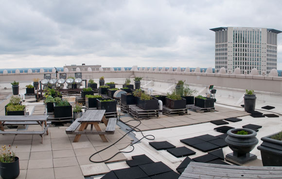 Such Great Heights Cleveland Rooftop Gardens Taking