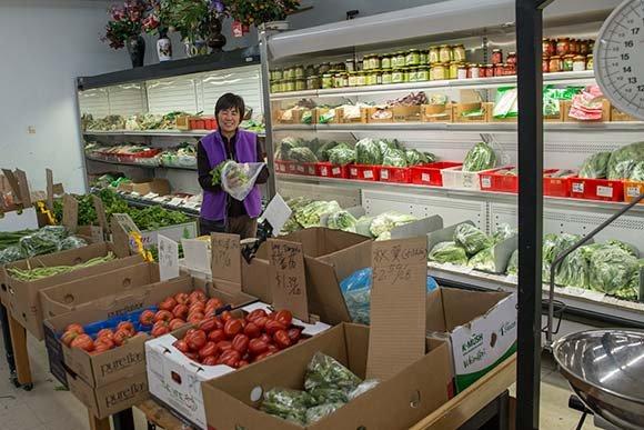 Holl Food Market