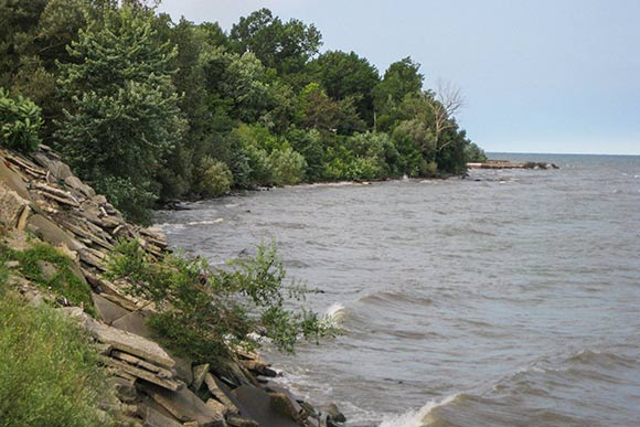 Current conditions of the four miles of  Lake Erie shoreline scheduled for improvement