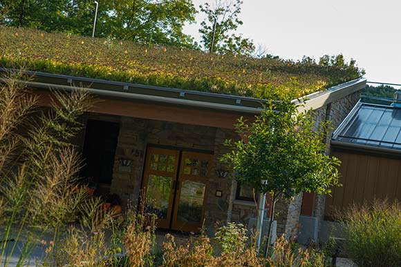 The green roof at the Watershed Stewardship Center