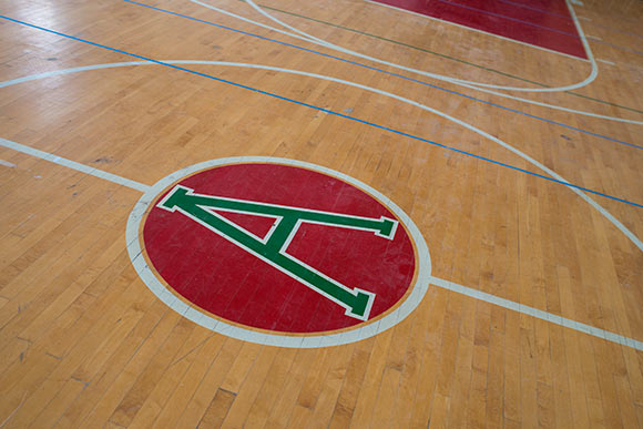 Alta House gym floor