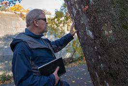 CIA associate professor, Douglas Paige observing nature's design in the Metorparks