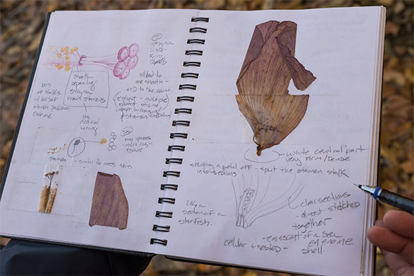 A page from Douglas Paige's field notebook