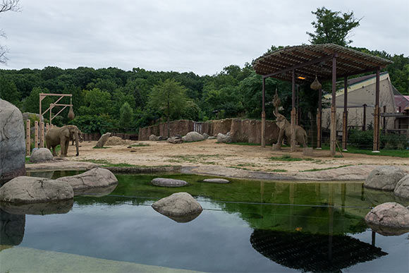 Elephant exhibit at the Cleveland Metroparks Zoo