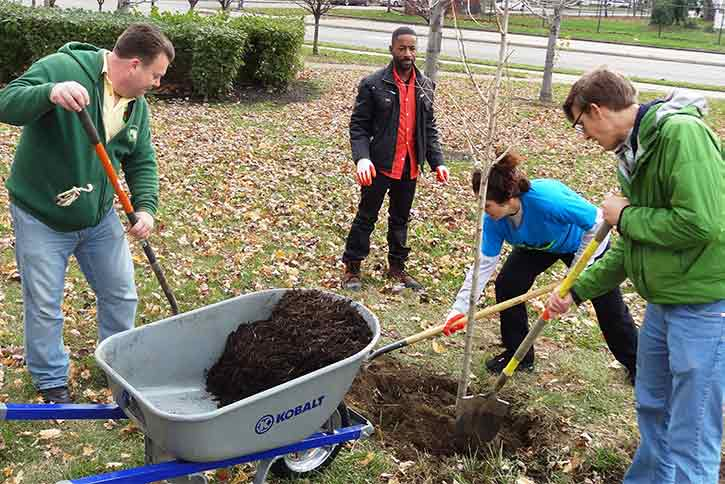 Tree planting in Cleveland