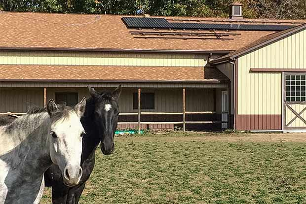 Lorain solar co-op member Peggy Ignaci adds solar power to her home's horse power