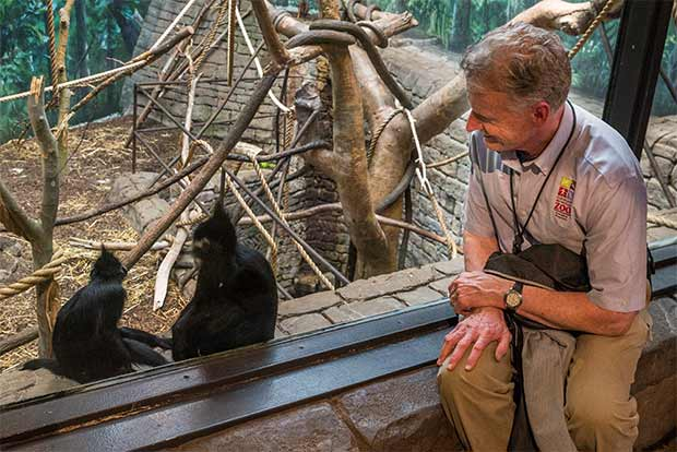 Cleveland Metroparks Zoo curator Tad Schoffner sitting with a Francois Langur in the RainForest