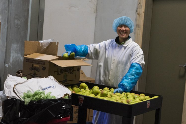 Sorting apples for Garden of Flavor at Central Kitchen