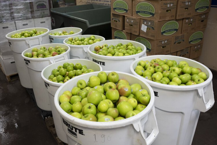 Apples await juicing for Garden of Flavor at Central Kitchen