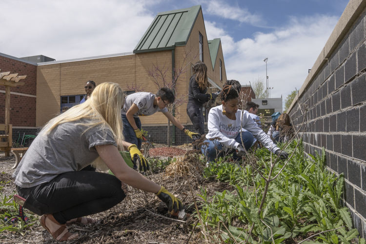 YFDC participants visited the Boys and Girls Club of Cleveland and lent a hand in some gardening and weeding to beautify their space in Cleveland's Slavic Village
