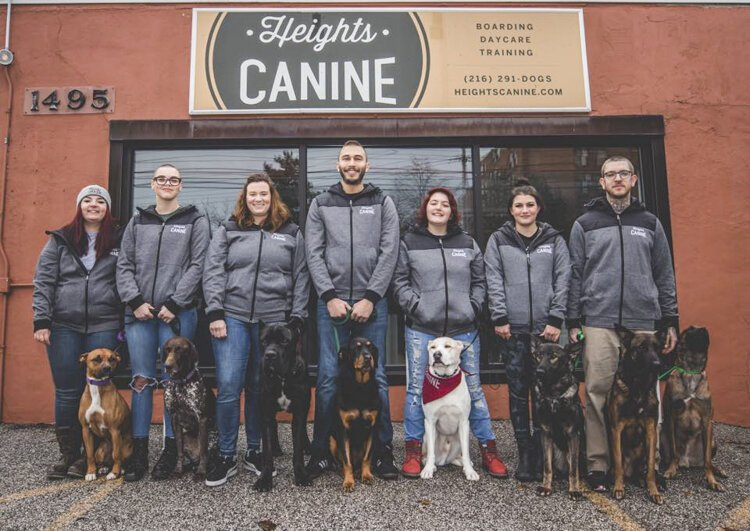 Heights Canine, a dog training, boarding, and daycare operation.