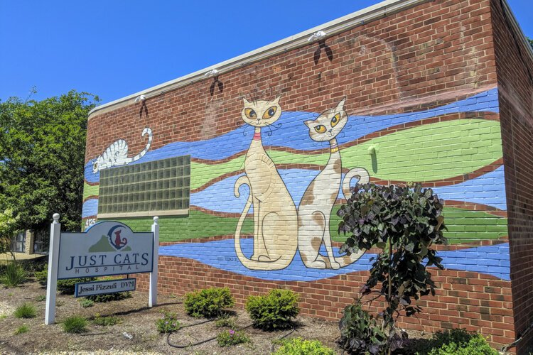 Just Cats Pet Hospital received a storefront renovation grant in 2018 to renovate the exterior and add a mural.