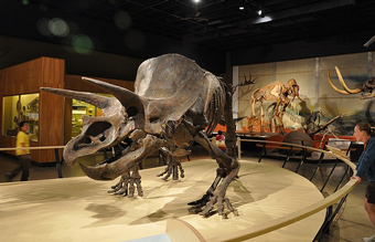Museum of natural history officially kicks off campaign Dinosaur museum ohio