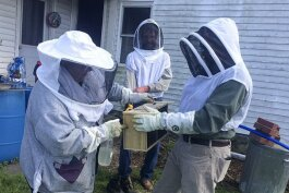 The beekeeping project at St. Herman House – FOCUS Cleveland