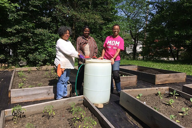 The city of Cleveland's Summer Sprout program empowers people who want to start a community garden.