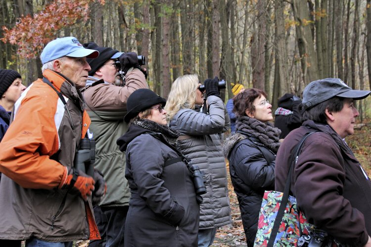 Western Cuyahoga Audubon Society Urban Birding With David Lindo at Cleveland Metroparks Rocky River Reservation.