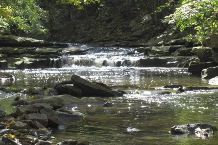 Sandwiched between the hard sandstone and softer shale of Doan Brook's bluestone gorge in Ambler Park are hidden treasures, including small waterfalls.