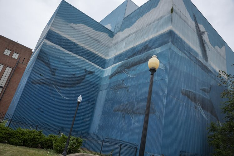 The now-faded mural gets new life this week by artist Wyland.