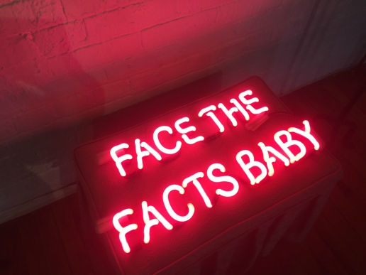 Liz Maugens' Fractured Atlas and funky neon Facts of Life accented