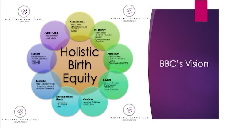 BBC's Holistic Birth Equity Model